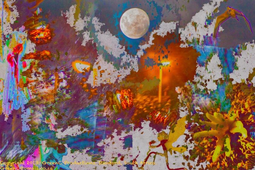 psychedelic2web