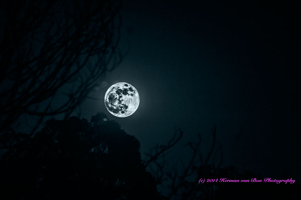 fullmoon16march14-1