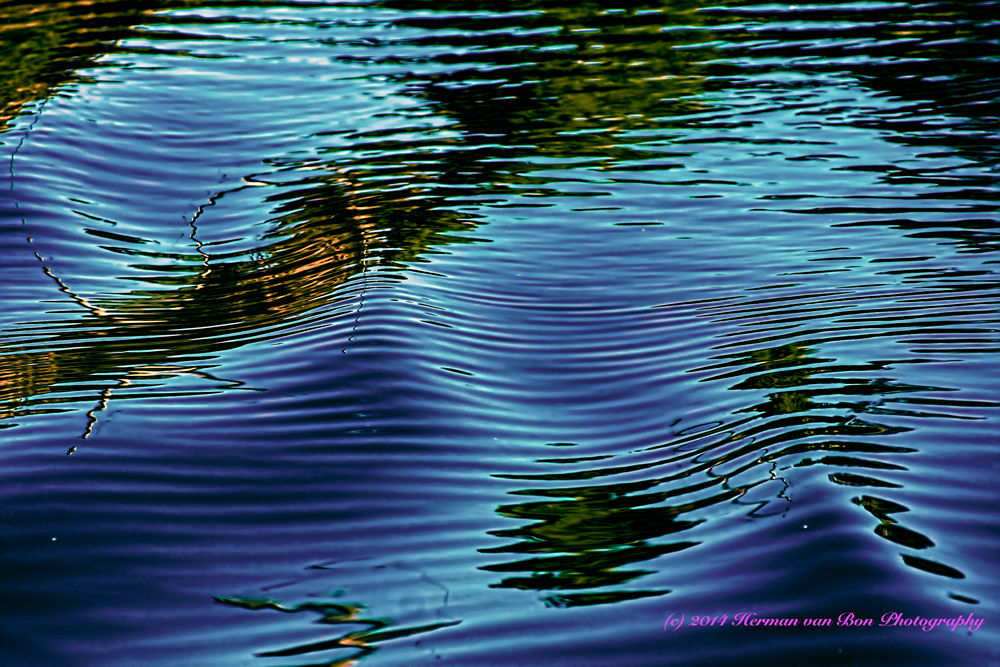 waves4