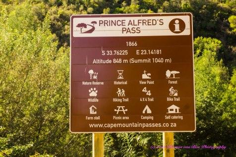 PrinceAlfredPass7