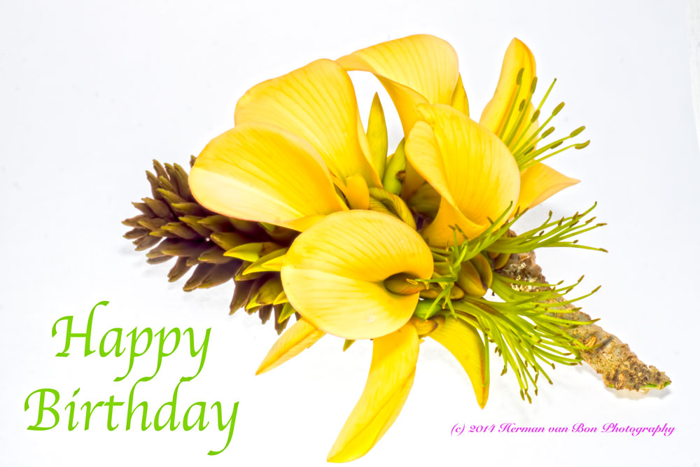 happybirthday2