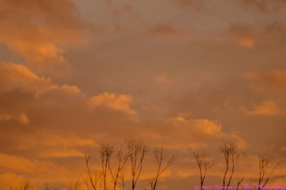 sunset28sept14-1