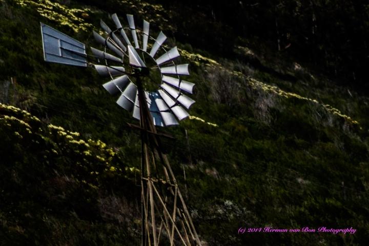 Vaalvleiwindmill