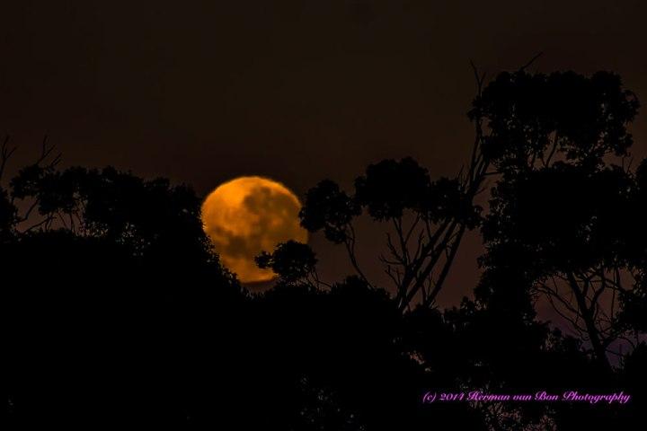 moonset7nov14