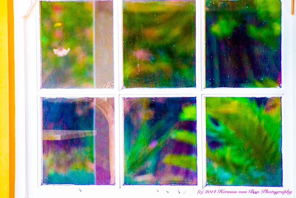 window13nov14
