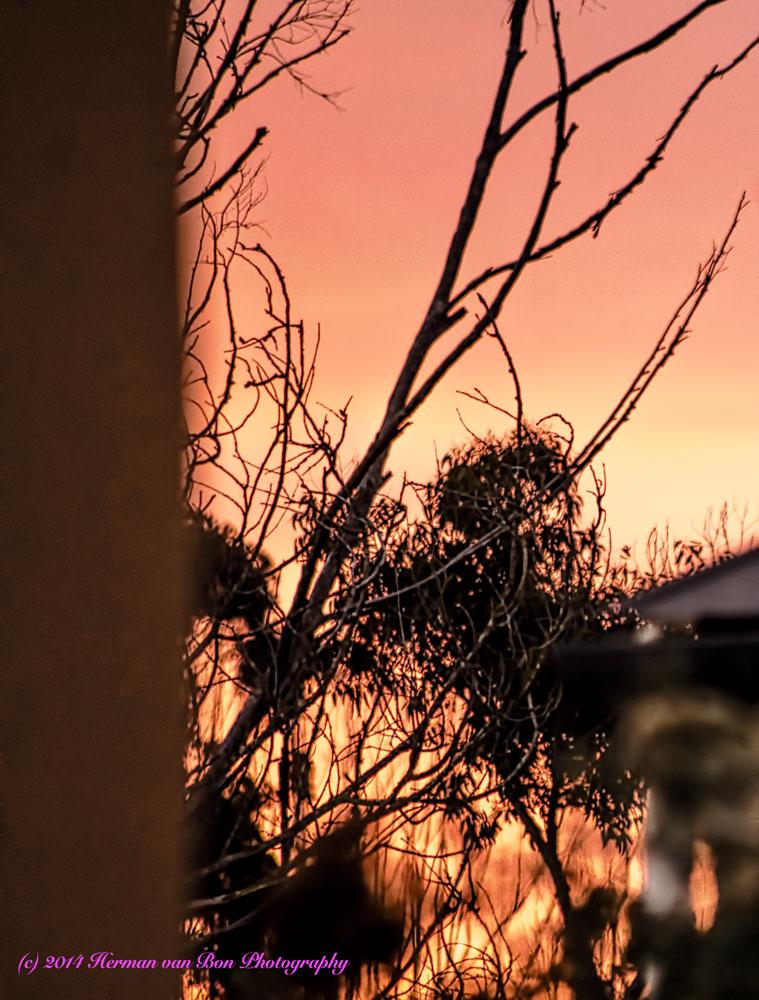 sunset3dec14-2
