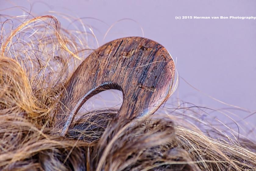 hairpin1