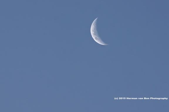 moon24jan15