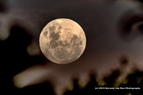 moon4jan2014-1