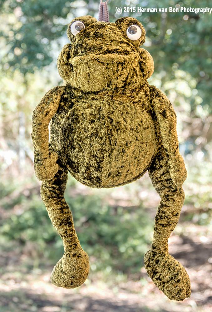 hanging-frog