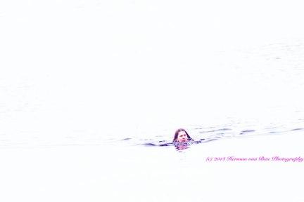 TheSwim