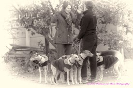 doggywalkandtalk