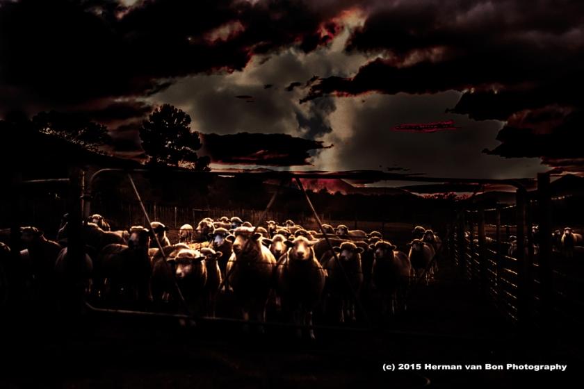 farm26may15-1