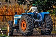 Koos on tractor
