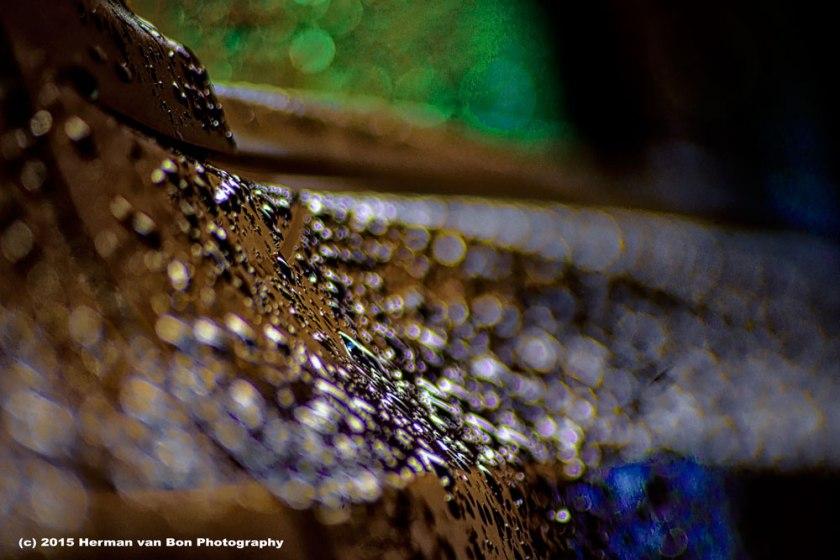 after-rain-1