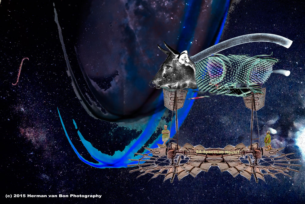 SA Space Cowboys