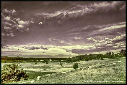 Rural Stanford