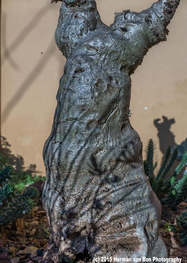sculpture10july15