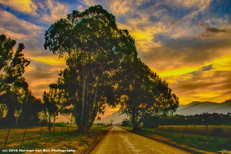 the-long-road-to-Wortelgat