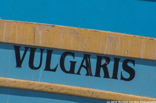 vulgarity-in-Struisbaai