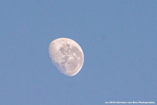 moon24july16