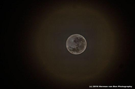Napier-moon-at-6-AM-20july16