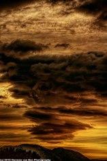 sunrise-wortelgat