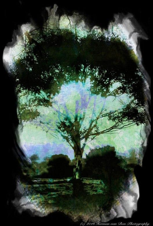 haiku-treeweb