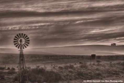 windmill-near-napier