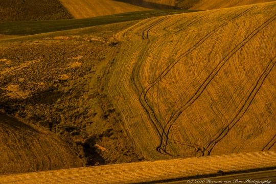 The Farmer's Land Art 2