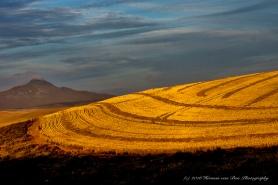 The Farmer's Land Art