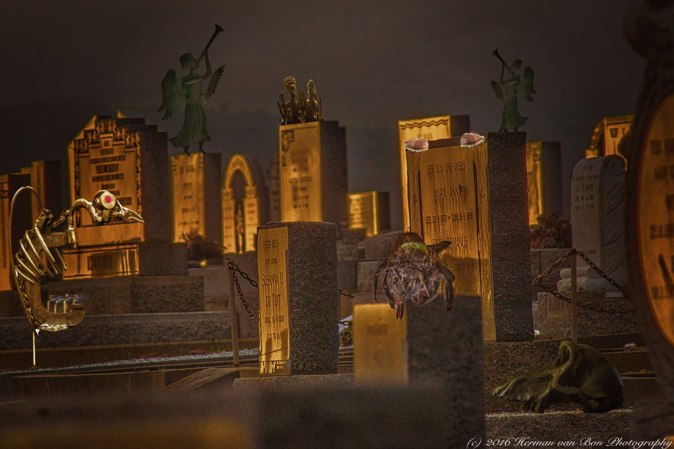 golden-hour-party-at-the-graveyard