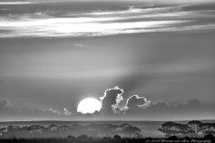 Herman van Bon Photography
