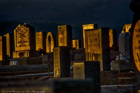 Golden Hour at the Graveyard