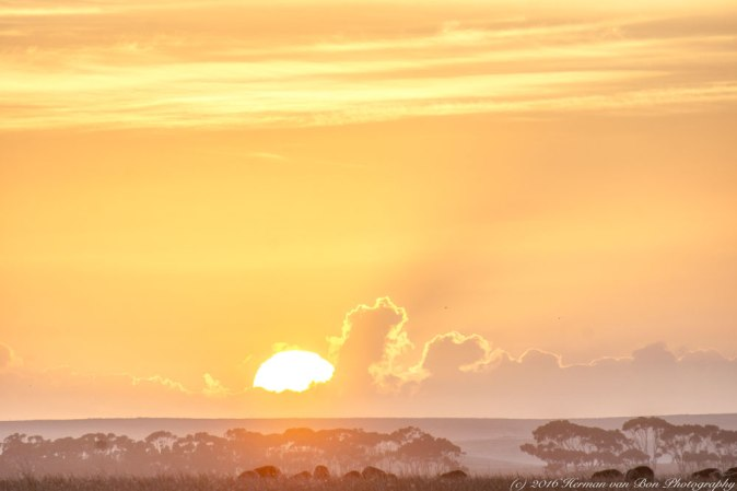 sunrise25nov16