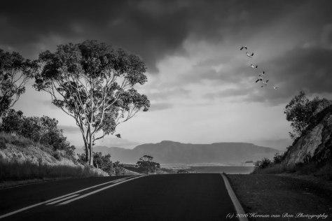 roadstop