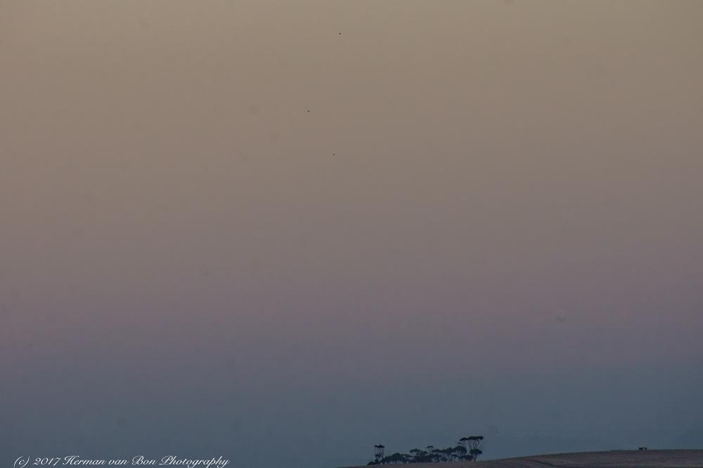 landscape-minimalism-19jan17