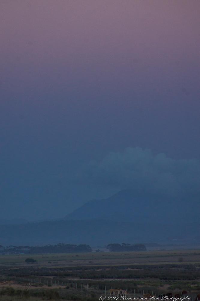 agulhas-national-park21feb17-2
