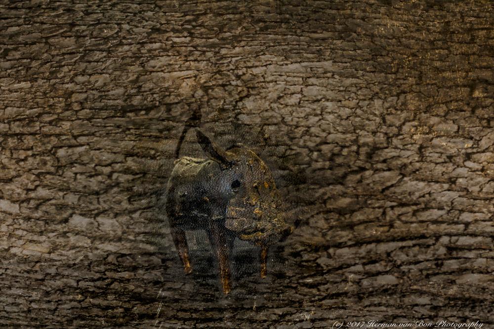 still2-warthog