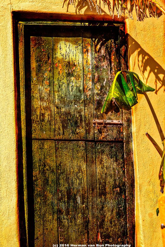 the-banana-door