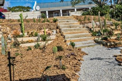 garden20may17-4