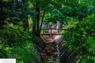 garden-lourensford2