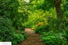 garden-lourensford3