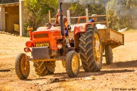 farm14dec17-5