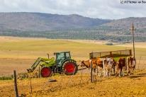 farm14dec17-7