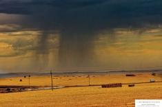 31oct17between-stormsvlei-and-swellendam