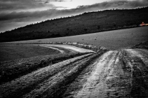 early-morning-mud-road