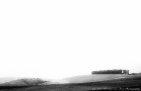 landscape-in-high-contrast