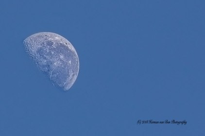 5june2018-9-30The-Moon