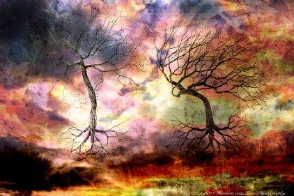 Dancing-Trees-Haiku40x30cm